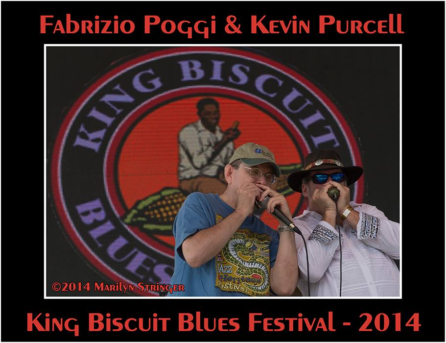 Fabrizio Poggi live at the King Biscuit Festival in Helena, Arkansas photo by Marilyn Stringer