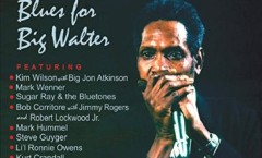 VARIOUS ARTISTS BLUES FOR BIG WALTER