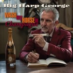 BIG HARP GEORGE WASH MY HORSE IN CHAMPAGNE